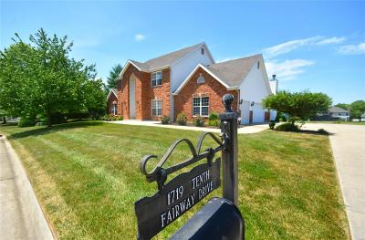 Belleville Single Family Home For Sale: 1719 10th Fairway