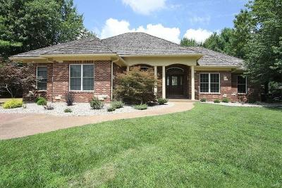 Edwardsville Single Family Home For Sale: 1203 South Oxfordshire