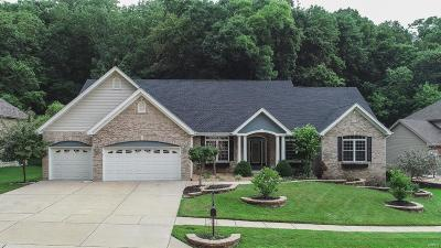 Eureka Single Family Home For Sale: 777 Southern Hills Drive