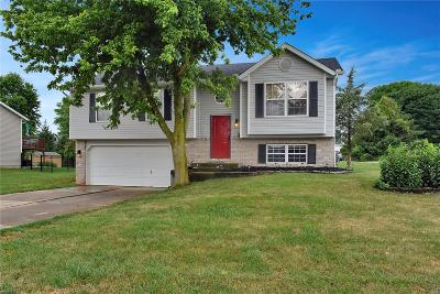 Maryville Single Family Home For Sale: 616 Copper Line