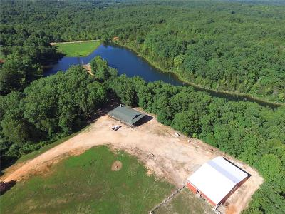 Jefferson County, Madison County, St Francois County Single Family Home For Sale: 10078 Horseshoe Lake