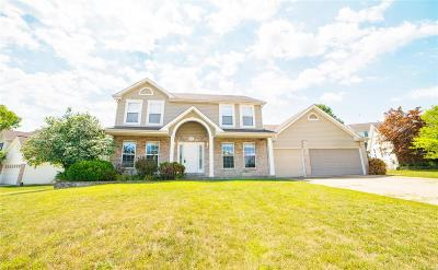 Edwardsville, Glen Carbon, Maryville, Troy, Collinsville, Caseyville, Fairview Heights, O'fallon, Belleview Single Family Home For Sale: 418 Winter Wind Drive