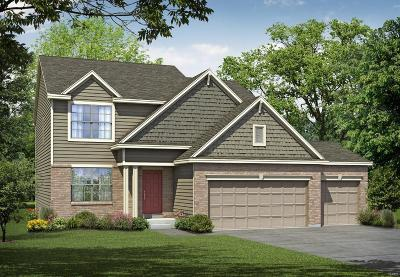 Wentzville MO Single Family Home For Sale: $358,958