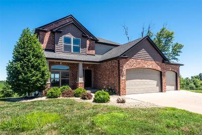 Caseyville Single Family Home For Sale: 1141 Pisa Drive