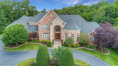 St Louis Single Family Home For Sale: 9650 Mill Hill Lane