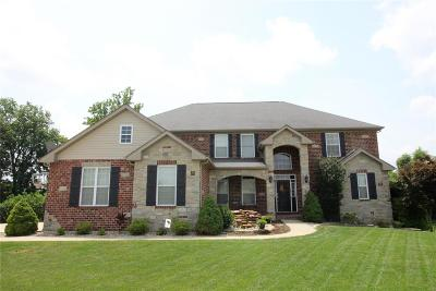 Swansea Single Family Home For Sale: 3405 Castle Pines Court