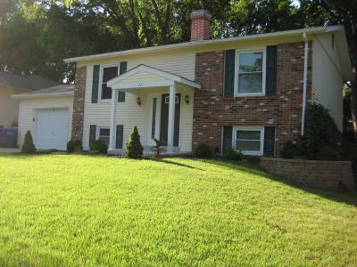 Ballwin Single Family Home For Sale: 371 Messina Drive