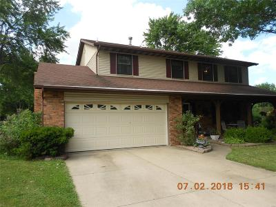 Swansea Single Family Home For Sale: 505 Green Haven Drive