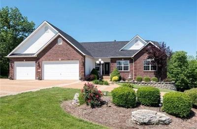 Barnhart Single Family Home For Sale: 6551 Dallas Drive