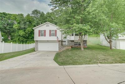 House Springs MO Single Family Home For Sale: $163,000