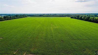 O'Fallon Farm For Sale