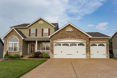 Fenton Single Family Home For Sale: 808 Konert Hill Drive
