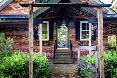 Caseyville Single Family Home For Sale: 300 Lockner Lane