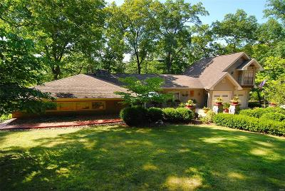 Byrnes Mill Single Family Home For Sale: 3638 South Lakeshore