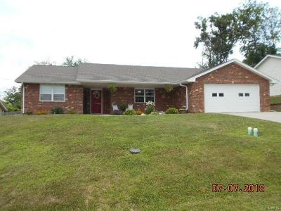 Hannibal MO Single Family Home For Sale: $169,900