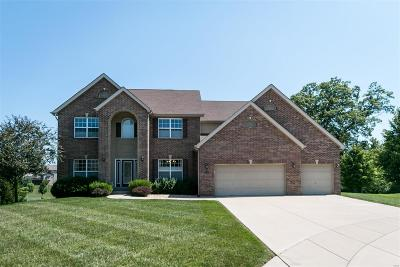 Caseyville Single Family Home For Sale: 905 Bear Creek Court