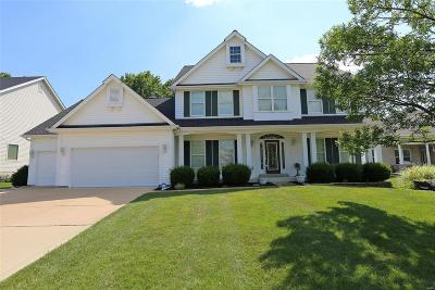 St Louis Single Family Home For Sale: 245 Bluff View Circle