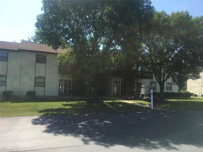 Monroe City MO Condo/Townhouse For Sale: $69,000