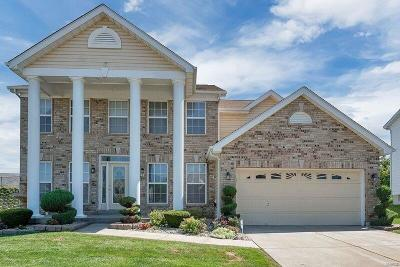 Single Family Home For Sale: 43 Logan Crossing Circle