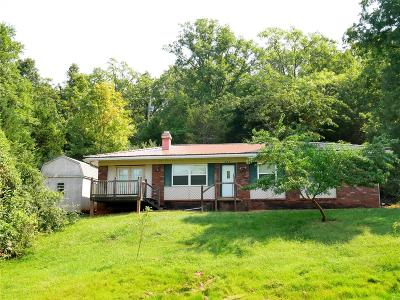 Bonne Terre Single Family Home For Sale: 250 Normandie