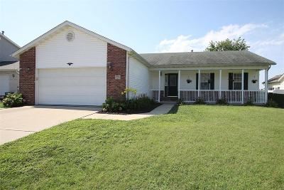 Caseyville Single Family Home For Sale: 402 Geaschel Drive