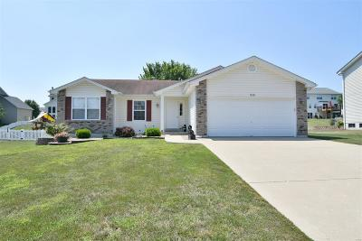 Wentzville Single Family Home For Sale: 1838 Somerset Hollow Lane