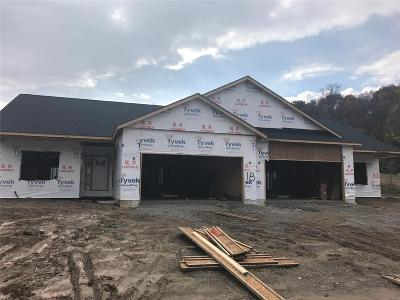 Caseyville New Construction For Sale: 8025 Villa Valley Lane