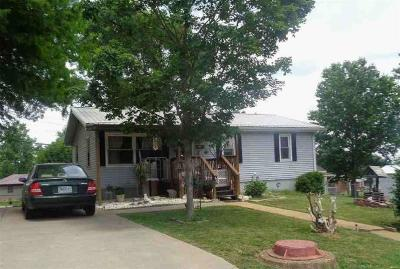 Bonne Terre Single Family Home For Sale: 109 Yale