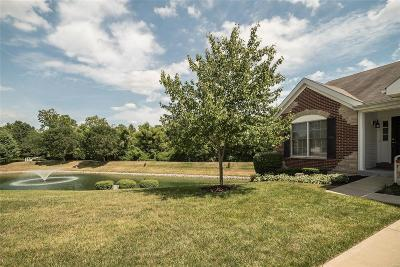Edwardsville, Glen Carbon, Maryville, Troy, Collinsville, Caseyville, Fairview Heights, O'fallon, Belleview Condo/Townhouse For Sale: 744 River Glen
