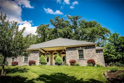 Fenton Single Family Home For Sale: 324 Hays Hill Drive