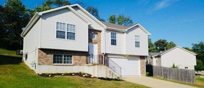 Pevely Single Family Home For Sale: 815 Riverview Drive