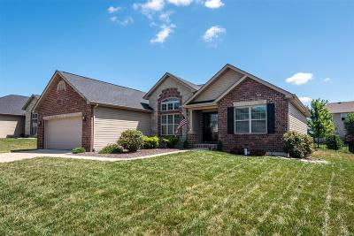 Windsor Creek Single Family Home For Sale: 1216 Merriam Parkway