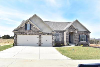 Lake St Louis Single Family Home For Sale: 117 Eagle Estates Drive