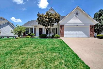 Dardenne Prairie Single Family Home For Sale: 285 Waterford Crystal Drive