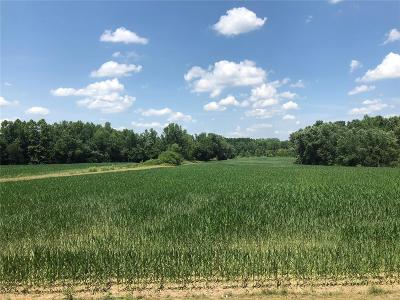 Adair County, Audrain County, Clark County, Knox County, Lewis County, Macon County, Marion County, Monroe County, Pike County, Ralls County, Scott County, Shelby County Farm For Sale: 4762 Country Road 234