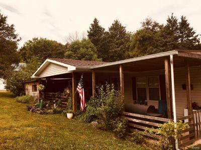 Catawissa, Robertsville Single Family Home For Sale: 1649 Green Tree Acres