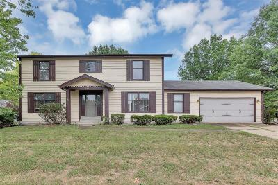 Lake St Louis Single Family Home For Sale: 249 Savoy Drive