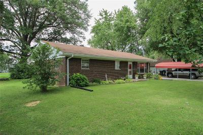 St Clair County Single Family Home For Sale: 1421 North 2nd Street
