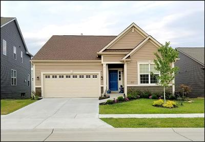 St Charles Single Family Home For Sale: 2312 Banon Drive