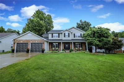 Edwardsville Single Family Home For Sale: 1900 Butler Boulevard