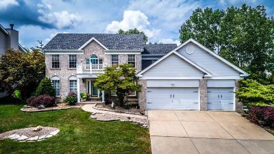 O'Fallon Single Family Home For Sale: 1313 Crooked Stick