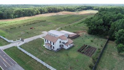 Lincoln County, Warren County Single Family Home For Sale: 22350 State Highway O