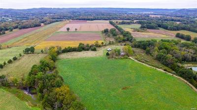 Jefferson County, Madison County, St Francois County Farm For Sale: 9081 Silver Lane