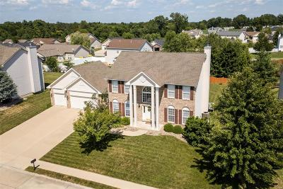 Single Family Home For Sale: 804 Cardiff Court