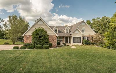 Wentzville Single Family Home For Sale: 312 Meadow Brook Estates Lane