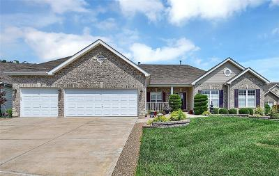 Wentzville MO Single Family Home For Sale: $375,000