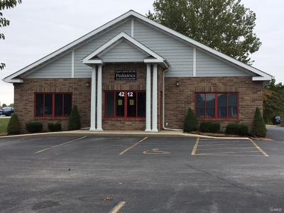 Commercial For Sale: 4212 North Illinois
