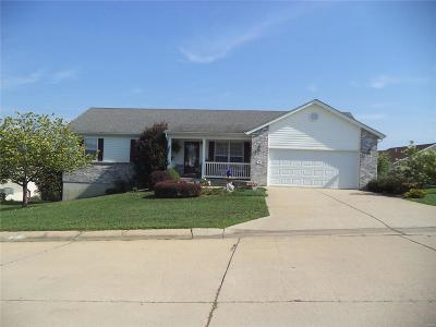 St Clair Single Family Home For Sale: 315 Cart Path Lane