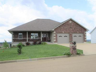 Farmington MO Single Family Home For Sale: $249,000