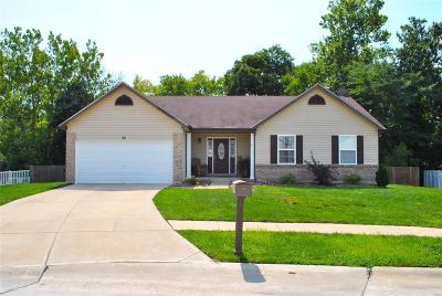 Wentzville Single Family Home For Sale: 32 Colonial Creek Court